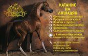 Конный клуб Успех (верховая езда,  обучение, выезд в поля,  фотосесии)